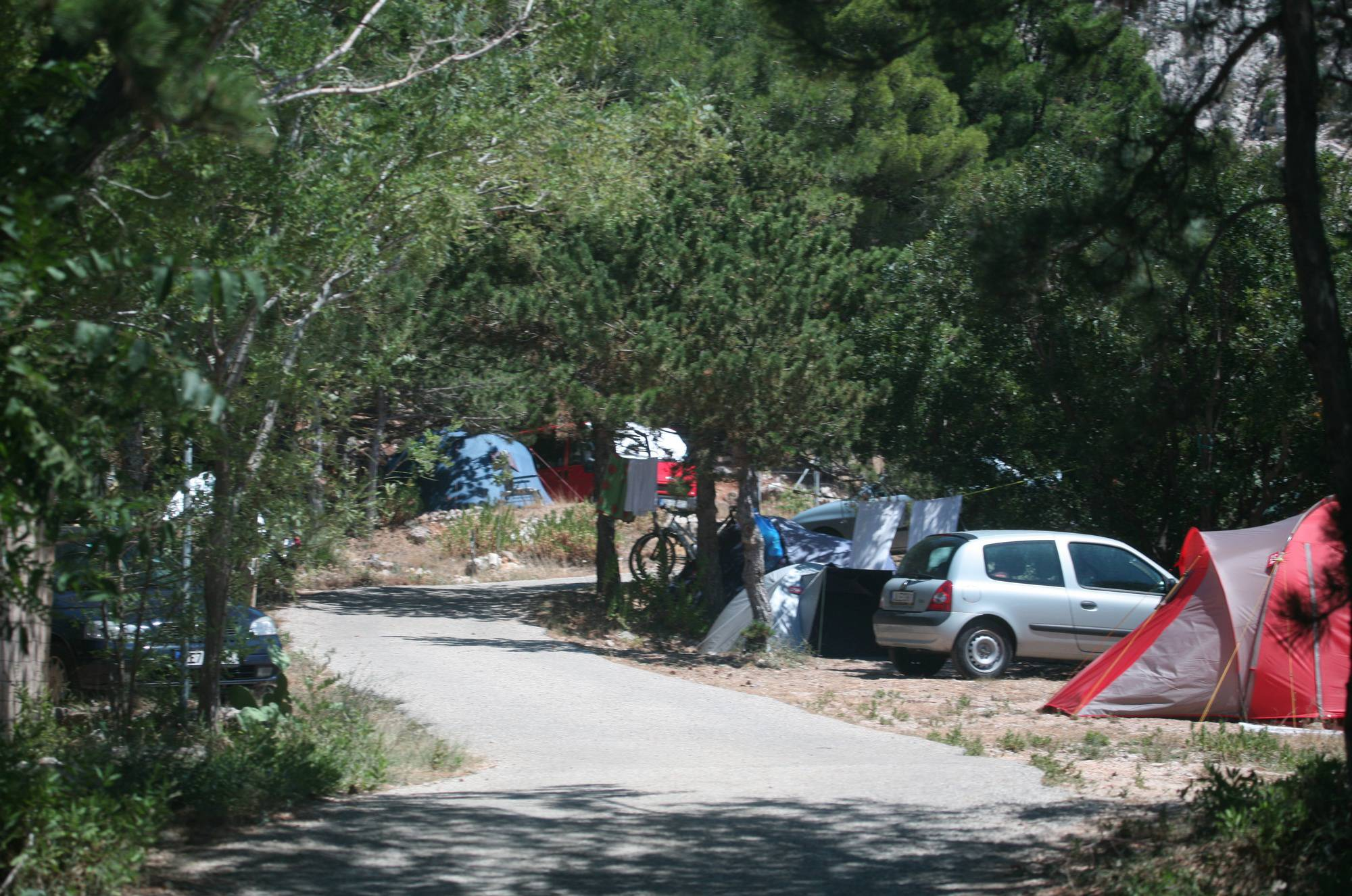 Nudist Pictures Sunnyside Camp Scene - 2